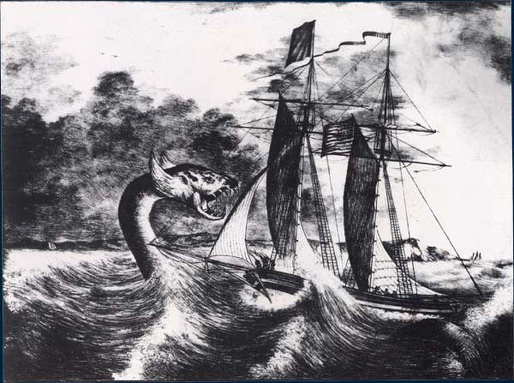 poisson serpent de mer